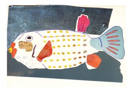 Boxfish A5 Abi Ponton